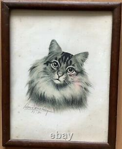 Lithography Portrait By Lartist Léon Danchin Cat Animals In The Early 19th Century