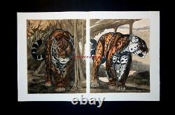 Paul Jouve Original Lithography Two Jaguars