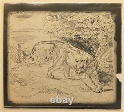Tiger Cliche-glass At 1854 By Delacroix, 1921 Draw
