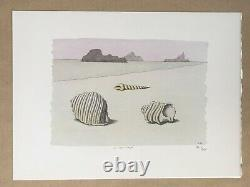 Pierre Le Tan Coquillages Original Lithograph Rives paper Numbered Signed plate